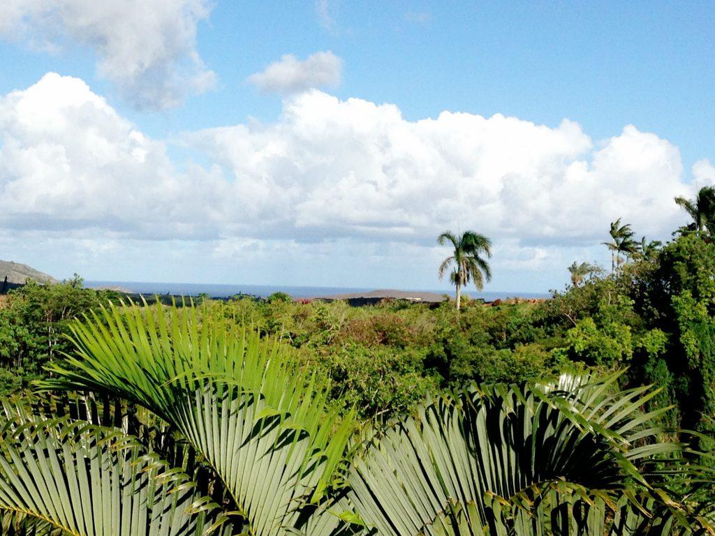 Hawaii IV Kaua'i