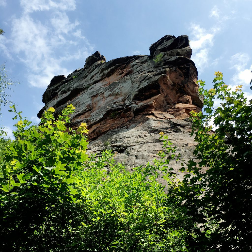 Südpfalz
